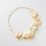 Ornamento das flores no dia do ` s do Valentim Fotos de Stock Royalty Free