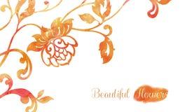 Ornamento de la acuarela de la flor Imagenes de archivo