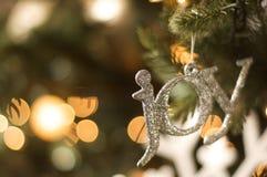 Ornamento de la alegría en el árbol de navidad Fotos de archivo libres de regalías