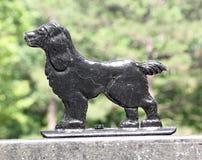 Ornamento de la cerca del perro Fotos de archivo