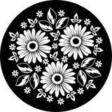 Ornamento de la flor blanca en un fondo negro. Fotografía de archivo libre de regalías