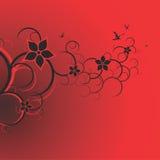 Ornamento de la flor del vector Imagen de archivo libre de regalías