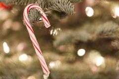 Ornamento de la Navidad que cuelga de un árbol de navidad Foto de archivo