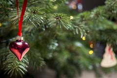 Ornamento de la Navidad un corazón rojo que da en el árbol de navidad Fotografía de archivo libre de regalías