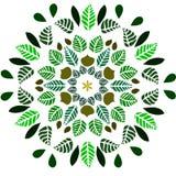 Ornamento de las hojas Foto de archivo libre de regalías