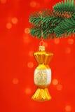 Ornamento de oro de Cristmas del caramelo en árbol de pino noble Imágenes de archivo libres de regalías