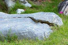 Ornamento de pedra do jardim Fotografia de Stock