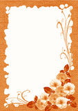 Ornamento decorativo Foto de Stock