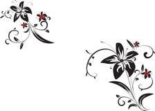 Ornamento decorativo del vector Fotografía de archivo libre de regalías