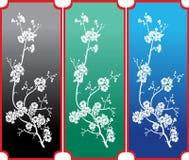 Ornamento dei fiori Fotografie Stock