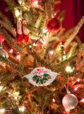 Ornamento del cangrejo de Maryland de la Feliz Navidad Foto de archivo libre de regalías