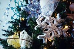 Ornamento del copo de nieve Imágenes de archivo libres de regalías