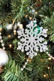 Ornamento del fiocco di neve fotografia stock libera da diritti