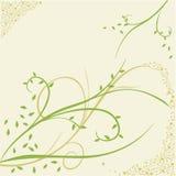 Ornamento del fiore Fotografie Stock Libere da Diritti