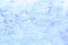 Ornamento del hielo Fotos de archivo libres de regalías