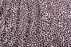 Ornamento del leopardo Fotografie Stock Libere da Diritti