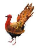 Ornamento del pavo de la acción de gracias en blanco Imágenes de archivo libres de regalías