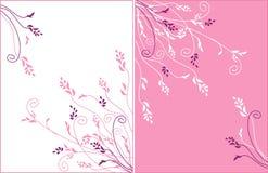 Ornamento delicado do vetor da flor Foto de Stock Royalty Free