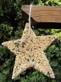 Ornamento dell'alimentatore dell'uccello fotografia stock