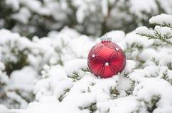 Ornamento della palla di Natale nell'orario invernale Immagine Stock Libera da Diritti