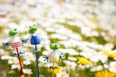Ornamento della rana Immagini Stock Libere da Diritti