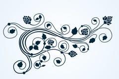 Ornamento di curlyl della flora di vettore Immagine Stock Libera da Diritti