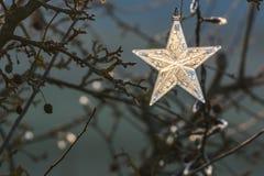 Ornamento di natale della stella Fotografia Stock