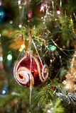 Ornamento di natale sull'albero Fotografia Stock Libera da Diritti