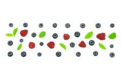 Ornamento do fruto fresco da floresta Imagem de Stock Royalty Free