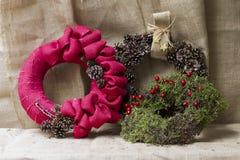 Ornamento do Natal com plantas naturais foto de stock royalty free