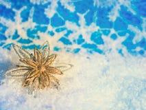 Ornamento do Natal na árvore de Natal com quinquilharias Imagem de Stock Royalty Free