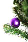 Ornamento do Natal que pendura de uma filial de árvore do xmas Imagens de Stock