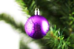 Ornamento do Natal que pendura de uma filial de árvore do xmas Foto de Stock