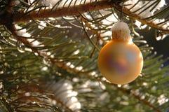 Ornamento dorato sull'albero Immagini Stock Libere da Diritti