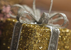 Ornamento festivo Imagen de archivo libre de regalías