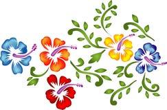 Ornamento florais Fotos de Stock Royalty Free