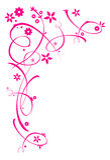 Ornamento florais cor-de-rosa Foto de Stock