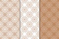 Ornamento florais de Brown Grupo de testes padrões sem emenda verticais Imagens de Stock