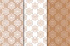 Ornamento florais de Brown Grupo de testes padrões sem emenda verticais Imagem de Stock Royalty Free