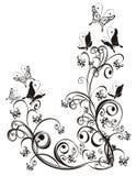 Ornamento floral Imágenes de archivo libres de regalías