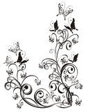 Ornamento floral Imagens de Stock Royalty Free