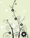 Ornamento floral ilustração stock