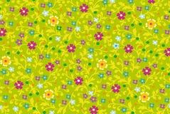 Ornamento floral Fotos de Stock