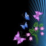 Ornamento floral Fotografia de Stock