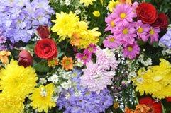 Ornamento floral Fotografía de archivo