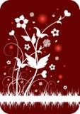 Ornamento floral abstrato Imagem de Stock