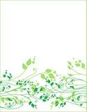 Ornamento floral da mola Fotos de Stock