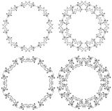 Ornamento floral del círculo Imagen de archivo