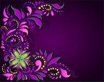 Ornamento floral em um fundo escuro Fotos de Stock Royalty Free