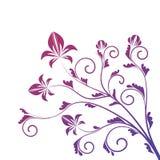 Ornamento floral encrespado aislado en blanco Foto de archivo